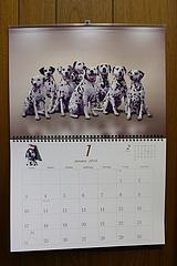 ダルメシアンカレンダー