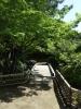 日本庭園にて?