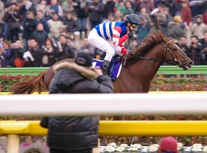 今年の日本馬は一味違う