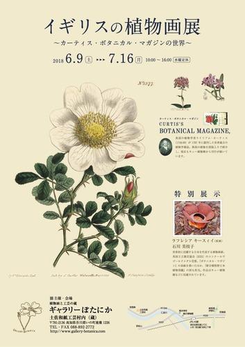 イギリスの植物画展ポスター02)