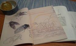 和暦手帳2
