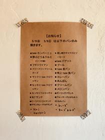 IMG-0851