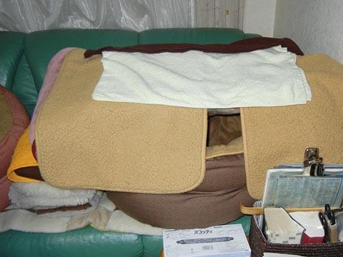 セティのバゥムベッド