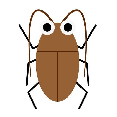 【衝撃】ゴキブリが怖すぎるからむしろ飼ってみた→ 衝撃の事実が発覚wwwwwwww