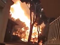 延焼のスピードやべえええええ!火炎放射器のように燃え広がる森林火災の映像。