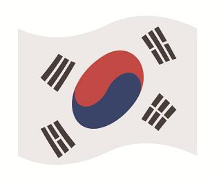 【韓国】電線に不時着したパラグライダー