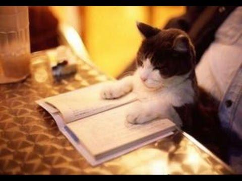 本を読む時って頭の中で声聞こえてるよね普通?