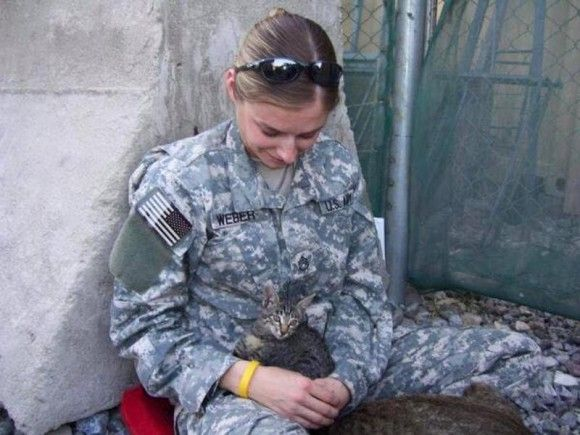 お互いがお互いを必要としていた。戦場で出会った特別な子猫と女性兵士の物語