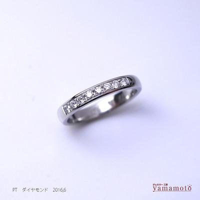 pt-dia-ring-160608