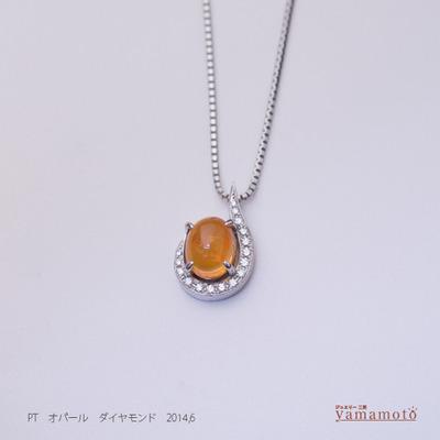 pt-opal-pen-140622