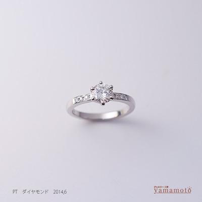 pt-dia-ring-140617