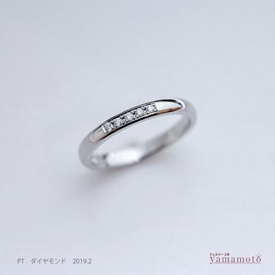 pt dia ring 190216