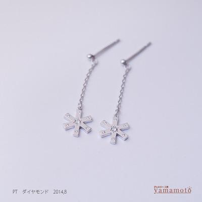 pt-dia-pierced-140802