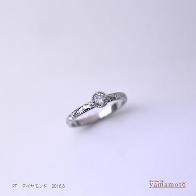 pt-dia-ring-160818