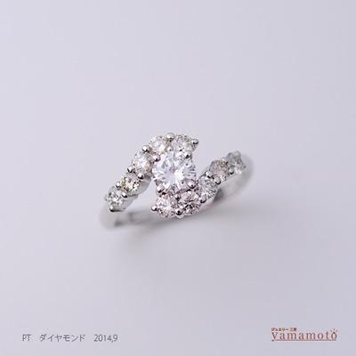 pt-dia-ring-140907