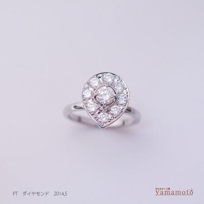 pt-dia-ring-140504