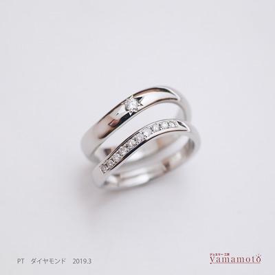 pt dia ring 190302