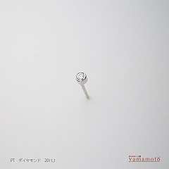 pt-dia-pierced-110123