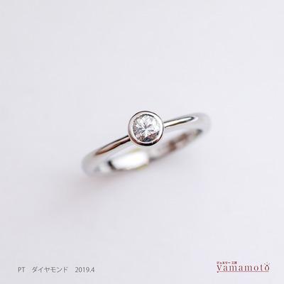 pt dia ring 190413