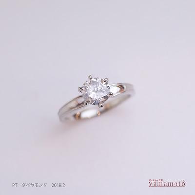pt dia ring 190213