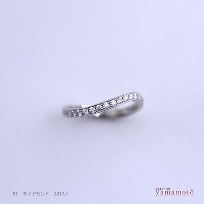 pt dia ring 170728