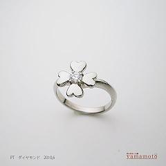 pt-dia-ring-100612