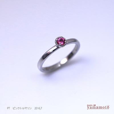 pt-ptoru-ring-160726