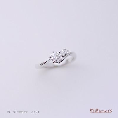 pt-dia-ring-150303