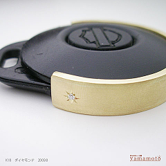 k18-dia-key-09.8