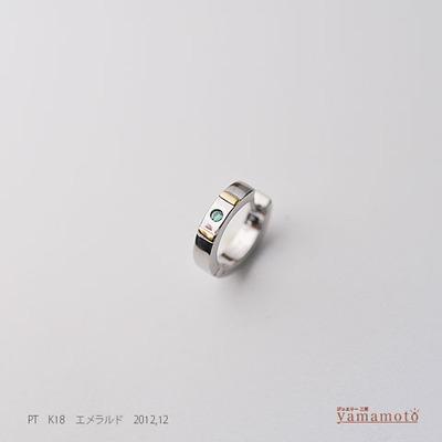pt-pierced-121231