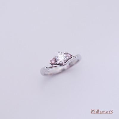 pt-dia-ring-140322