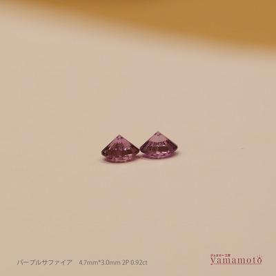 181114-purple-sapp-2