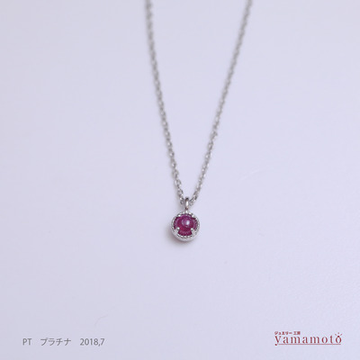 pt-ruby-pen-180704
