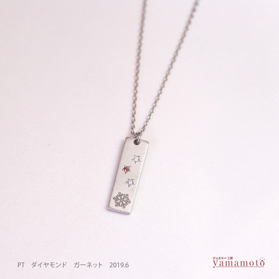 pt pen 19018