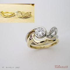 pt-dia-ring-09.7.8-2