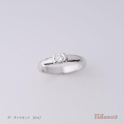 pt-dia-ring-140726