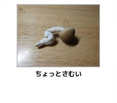 クリアアクリル014