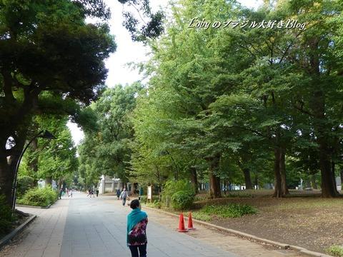上野公園8a