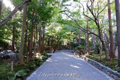 6-blog-ryuanji03h