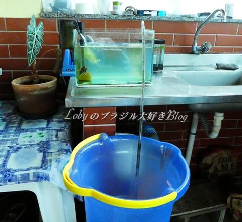 水槽の水の交換