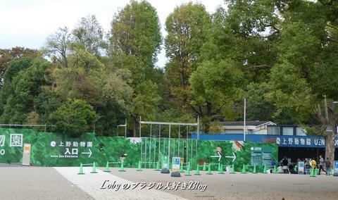 上野公園1動物園