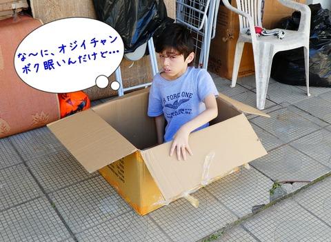 1箱入り息子6