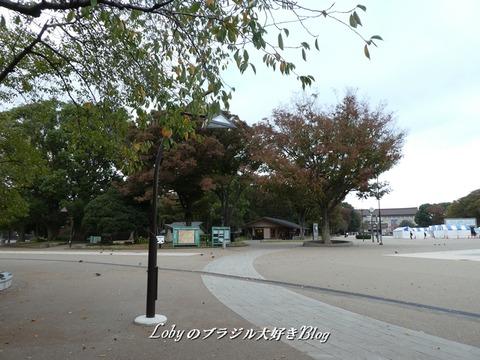 上野公園1a