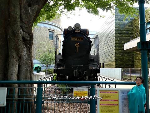 上野公園4国立科学博物館4