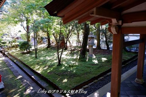 6-blog-ryuanji03c