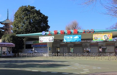640px-Ueno_Zoo_2012