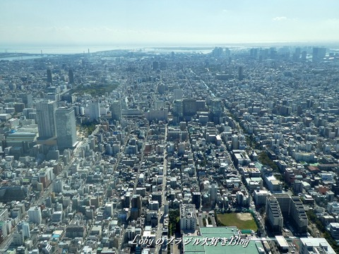 skytree7a-vista