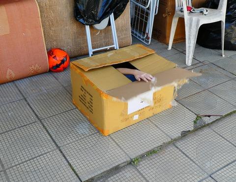 1箱入り息子2