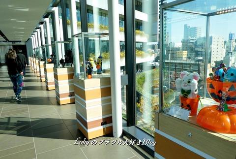 skytree7i-corredor