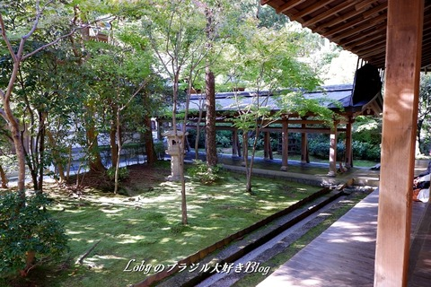 6-blog-ryuanji03a